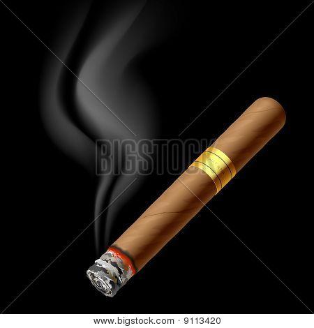 Smoldering cigar