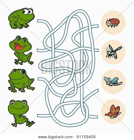 Maze Game: Help Frogs To Find Food
