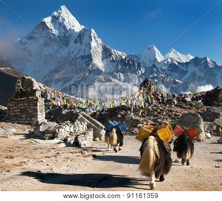 Ama Dablam With Caravan Of Yaks And Prayer Flags