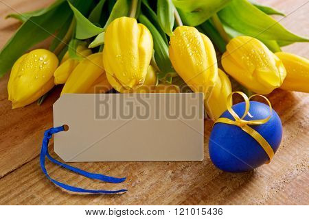 Yellow tulips and  blank greeting card .