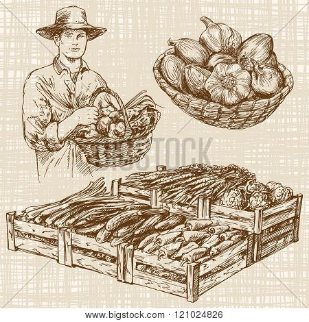Vegetables at a farmers market, hand drawn set