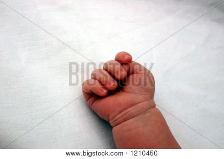 Newborn - Tiny Hand