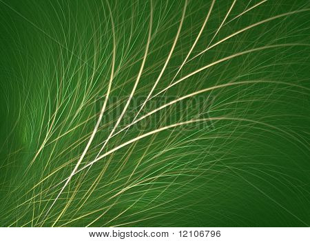 grass/fescue background