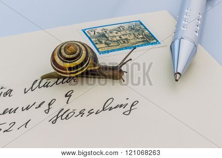 snail on envelope