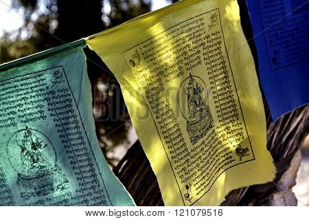 Colorful Buddhist Prayer Flags hanging on a string from tree to tree
