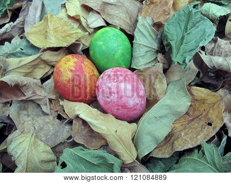Colorful Of Eggs On Dried Leaves  Background,easter,eggs Painting By Myself
