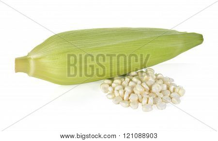 uncooked white corn wil leaf on white background