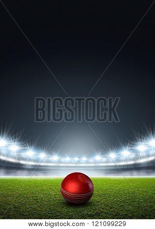 Generic Floodlit Stadium With Cricket Ball