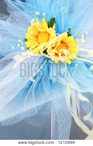 Flowers   5669