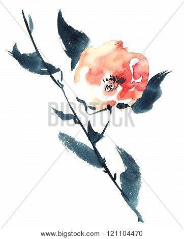 Red Flower Illustration