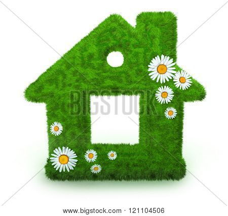 Abstract home grass