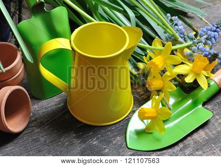 Colorful And Small Watering Can