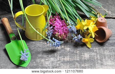 set of garden tools and flowers
