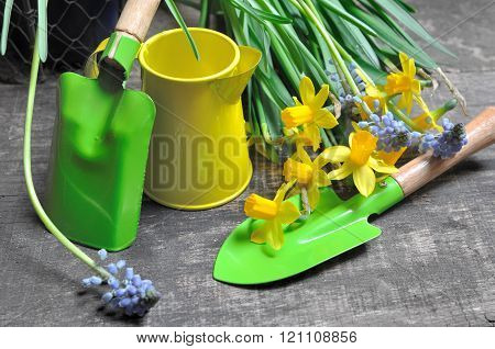 Colorful Gardening Tools
