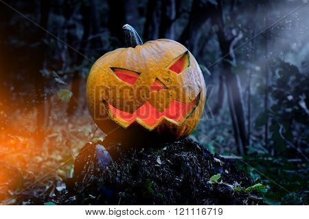 Glowing Pumpkin In The Forest. Jack O Lantern For Halloween
