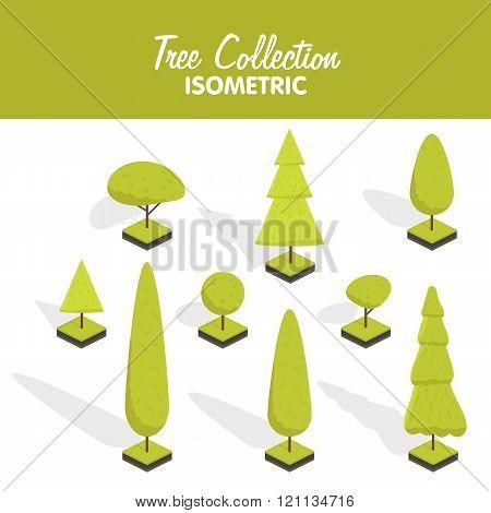 Isometric vector tree set