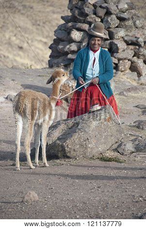 CUZCO, PERU - NOVEMBRE  2008: A unidentified woman with Alpaca pose for the camera  in Cuzco, Peru.