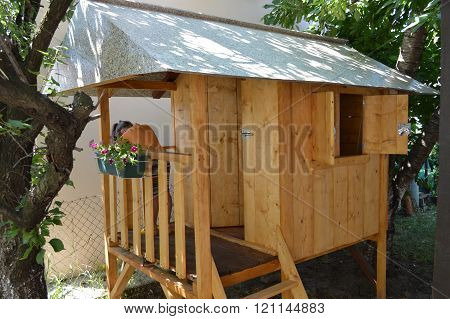 House made from wood for playing children.