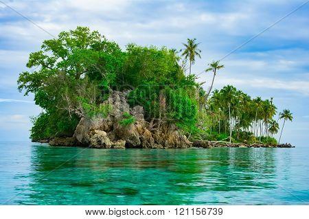 Remote Desert Tropical Island