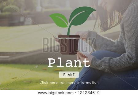 Planting Plant Plant Trees Green World Concept