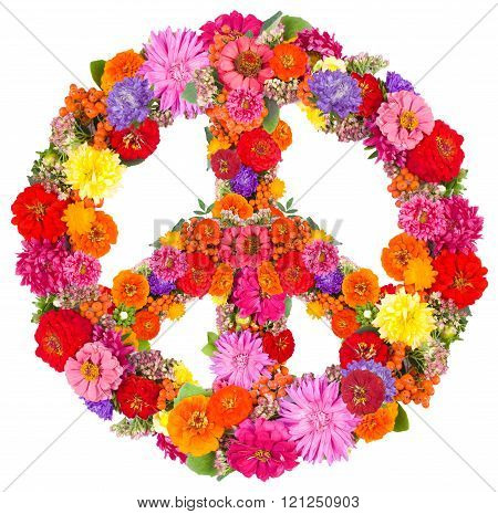 sign peace from flowers on white background.
