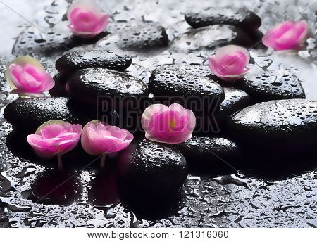 Flowers And Black Stones. Spa Concept.