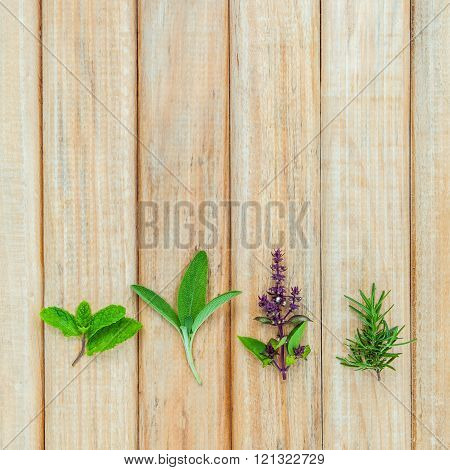 Various fresh herbs from the garden on rustic wooden background.