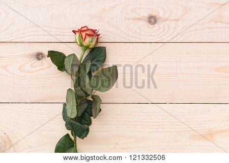 One Red Rose On The Wooden Table