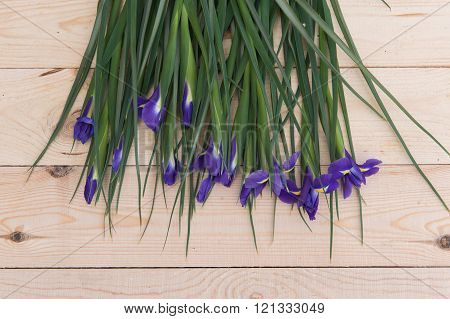 Purple Flowers With Green Stems On A Wood