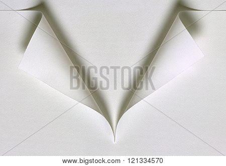 shirt collar made of paper