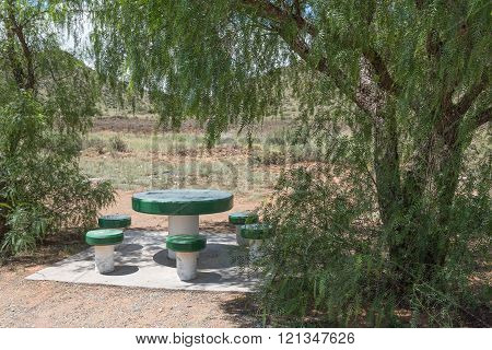 A shaded picnic spot next to the road between Steynsburg and Hofmeyer in the Eastern Cape Province of South Africa poster