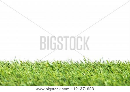 Green grass isolated white  background. Abstract concept.