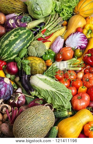 Healthy and Fresh vegetables.