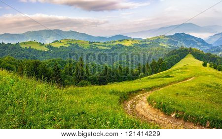 Road Through Conifer Forest In Mountains At Sunrise