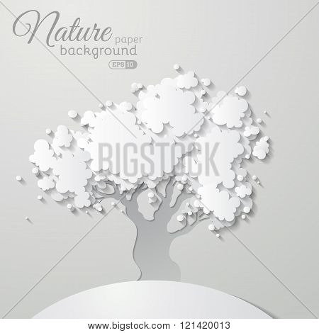 Nature Paper Background.