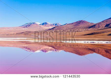 Laguna Colorada Lake