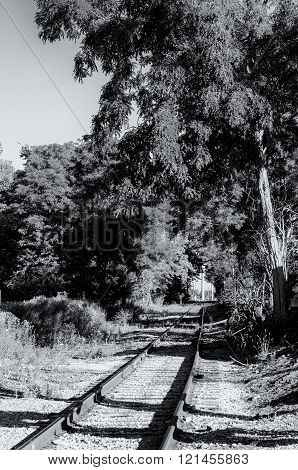 Old railroad track