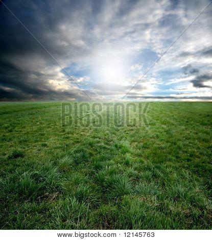 een grasveld en hemel