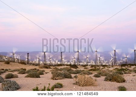 Renewable energy windmills line the mountaintops of Palm Springs during sunset