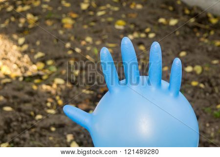 Surgical Glove Inflated