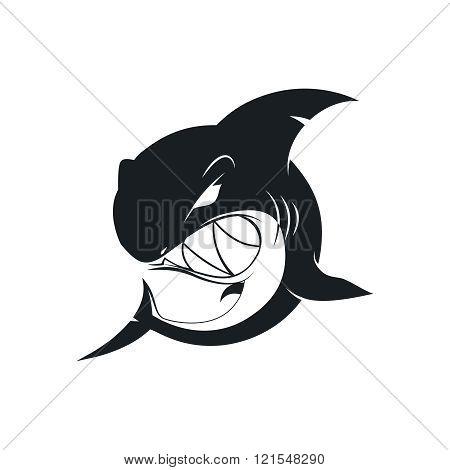 Wild black shark