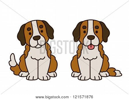 Cute Saint Bernard Puppy