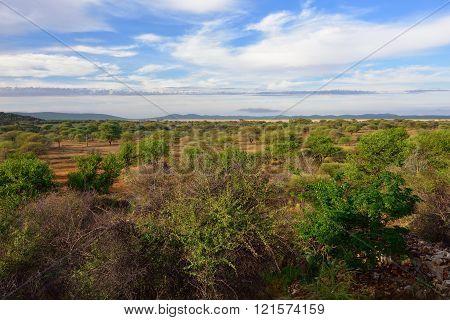 Damaraland Landscape, Namibia, Africa