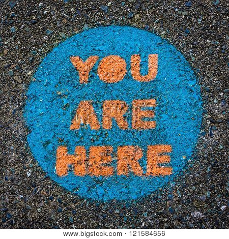 You Are Here. Funny Obvious Circular Public Park Sign Painted on Pavement. Colorful Blue Orange Close-up Texture Abstract. Pinpoints Location. Square Layout.