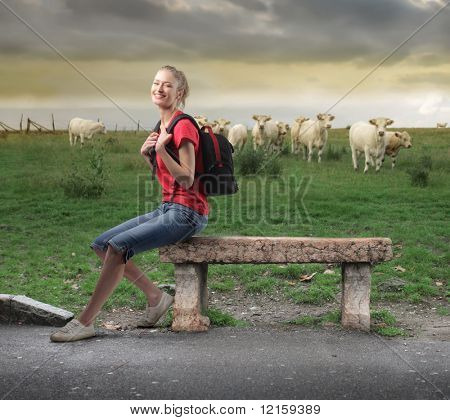 Young woman sitting on a bench in front of a green meadow with animals