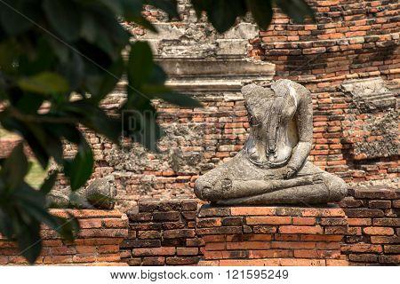 Buddha Statue Meditating Under Tree, Ayuthaya