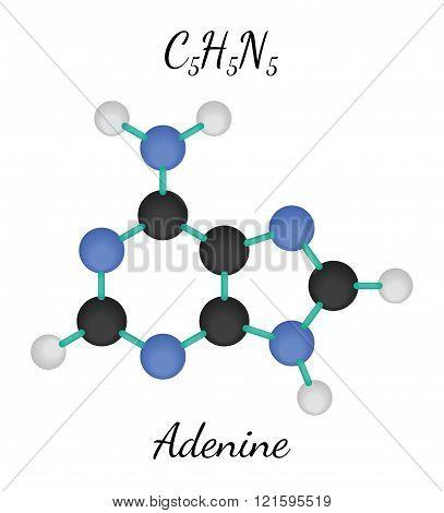C5H5N5 adenine molecule
