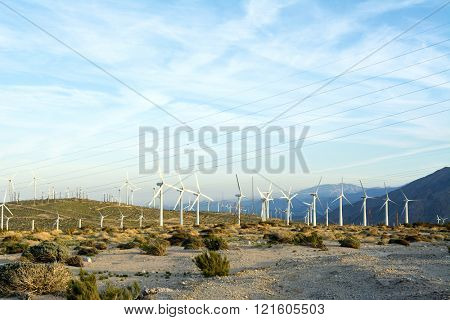 Renewable energy windmills line the mountaintops of Palm Springs