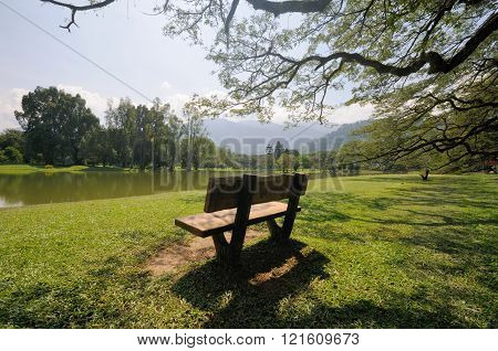 Taiping Lake garden with an empty chair