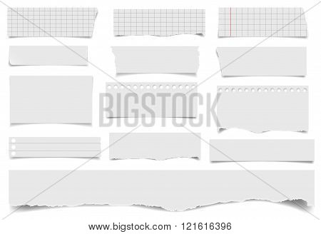 Set of notepaper sheets with shadow isolated on white background. Squared and lined notebook page wit ragged edges. Torn ragged paper pieces. Realistic vector illustration of paper pieces.